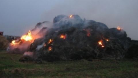 За сутки в области произошло 10 крупных пожаров