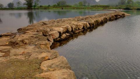 Под Саратовом землевладелец перегородил реку земляной дамбой
