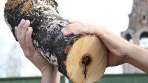 На СНТ «Утес» сосед соседу разбил голову деревянным бруском