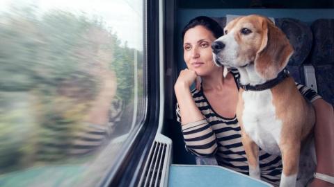 Железнодорожники призывают горожан не оставлять на дачах животных