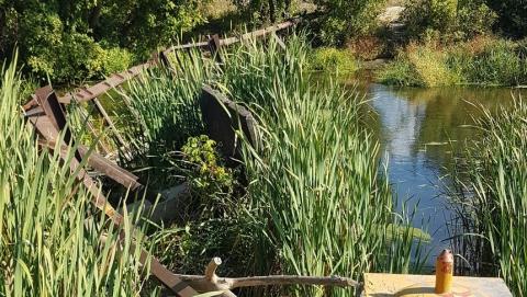 Власти Петровска просят восстановить мост через Медведицу