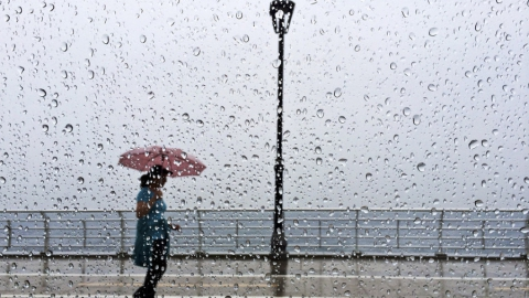 Сегодня по области пройдут дожди