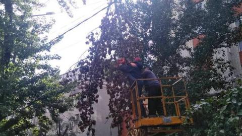 Упавшую на электропровода ветку убрали после обращения жителей