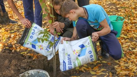 АО «Управление отходами» предоставит школам области уникальный биокомпост для высадки деревьев