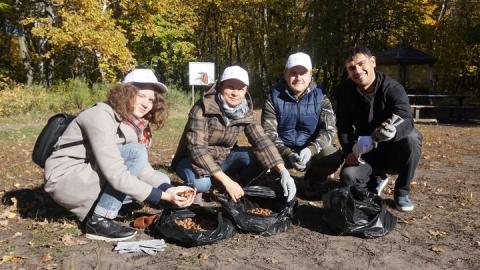 Сотрудники ООО «КВС» приняли участие в экологической акции «Живи, лес!»
