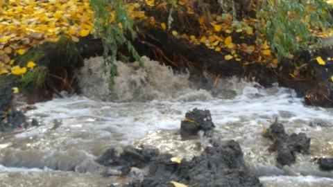 На Тархова забил водяной фонтан