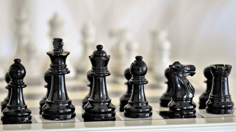 Саратовский шахматист выиграл чемпионат мира