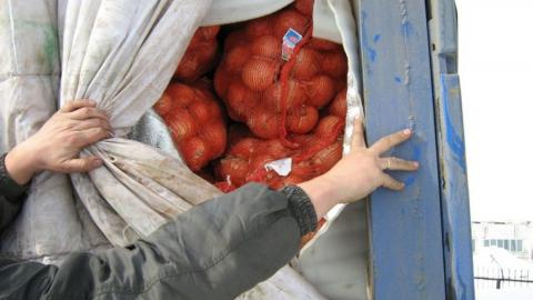 В Саратов не пустили 20 тонн лука из Казахстана
