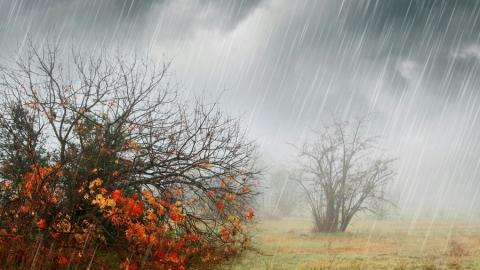 Синоптики обещают дождь и сильный ветер