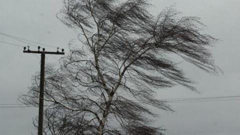 Опасные порывы ветра ночью накроют регион