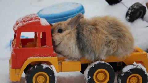 На расчистку улиц Саратова от снега вышли 124 человек