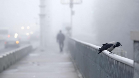 В Саратове потеплеет до +8 градусов