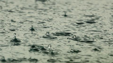 Саратовцам обещают дождливое воскресенье