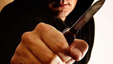 Двух лицеистов задержали за предновогодний налет на квартиру с ножом