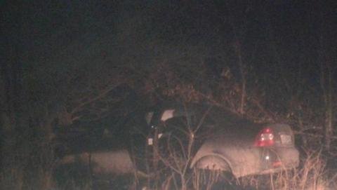 Пьяный водитель влетел в дерево. Его пассажирка погибла