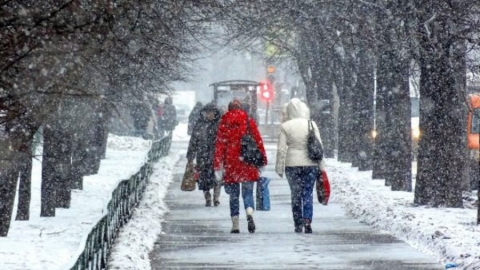 Сегодня по области  снег, туман и гололед
