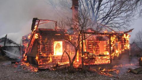 Маленькие близнецы погибли на пожаре, пока родители кормили кроликов