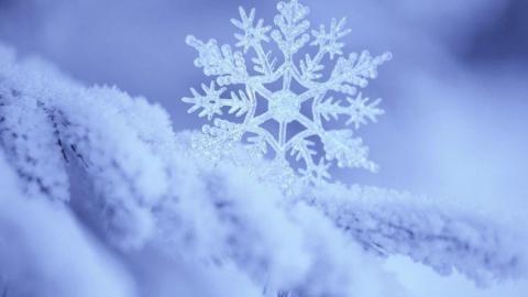 В выходные саратовцев ждет слабый мороз и снег
