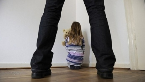 Покровчанина будут судить за надругательство над четырехлетней девочкой