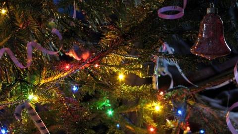 Пожнадзор советует ставить только свежесрубленные елки