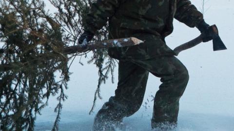 Чиновники и полицейские вышли на предновогоднюю охрану хвойных лесов