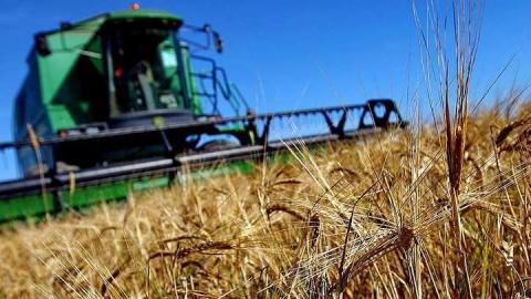 Путин: поддержка сельского хозяйства продолжится