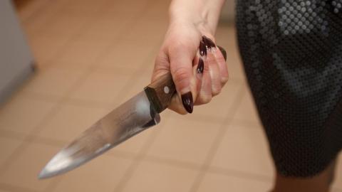 Женщина зарезала бывшего мужа и просидит 8 лет в изоляции