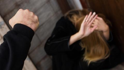 Мужчина признался в том, что выгнал из дома соседа и изнасиловал его сожительницу