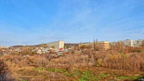Вместо торгово-развлекательного комплекса на трех участках выросли трава и деревья