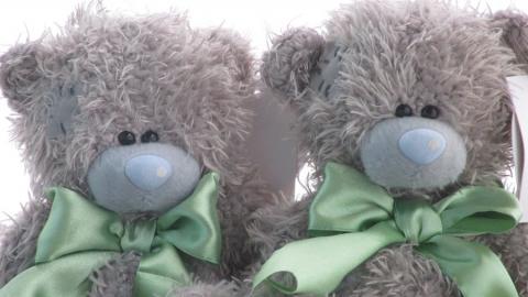 Саратовская фирма заплатит британской 100 тысяч за мишек Тедди