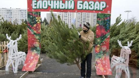 Полицейские закрыли пять елочных базаров