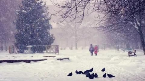 В Саратовской области снова ожидается снег с метелью