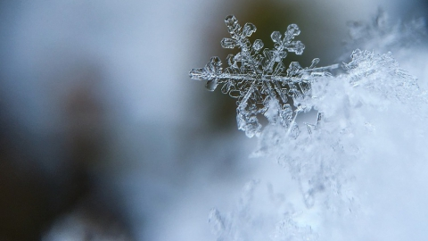 Днем в Саратове потеплеет до -14