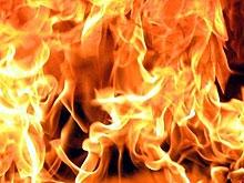 Лесные пожары в области будут тушить 23 лесхоза