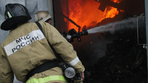 С пожара на Заречной эвакуировали 50 человек