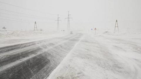 В Саратовской области - сильный ветер, мокрый снег и туманы