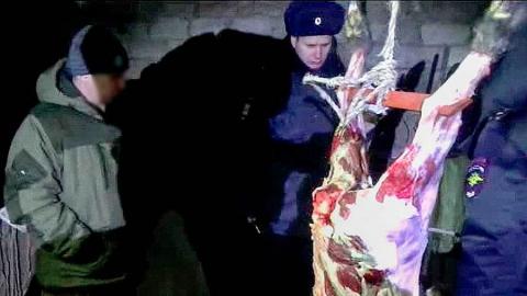 Полицейские нашли браконьера по следам крови