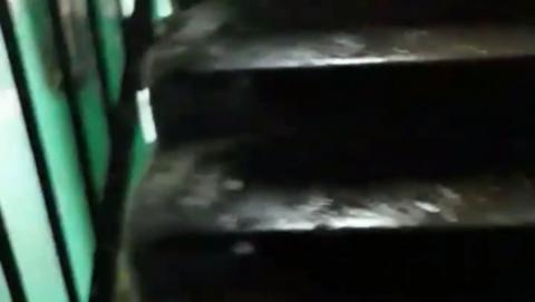 Шок-видео с обледеневшим изнутри подъездом не вызвало сочувствия у саратовцев