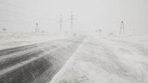 Регион с ночи накроют сильные снегопад, ветер и метель