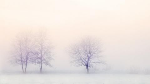 Снегопады возвращаются в Саратовскую область