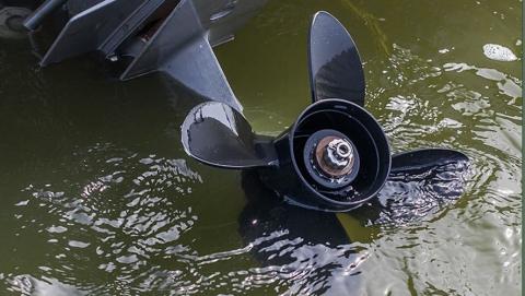 За изрубленную винтом катера голень подводный охотник взыскал 90 тысяч рублей
