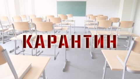 С 5 по 11 февраля закрываются все школы Саратова
