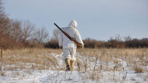 Четыре нарушения правил охоты зафиксировали за выходные