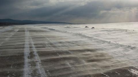 Синоптики предупредили о сильных порывах ветра и поземке