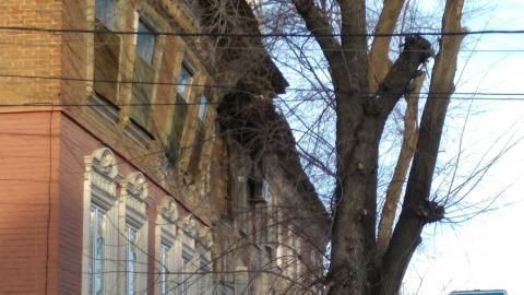 Рухнувший сегодня дом на улице Мичурина признали аварийным еще в прошлом веке