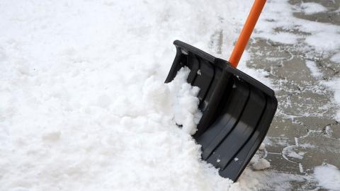 Учеников техникума и спортшколы заставляли убирать снег