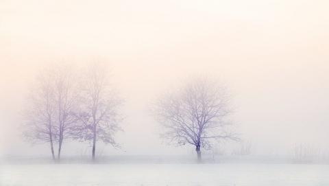 Сегодня весь день - сильные снегопады и туман