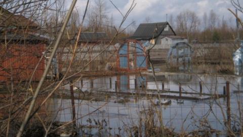 Саратовцам советуют пережидать паводок на деревьях или крышах