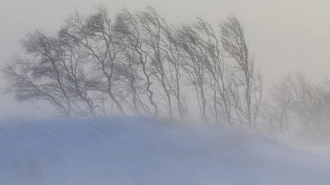 Пятикилометровая пробка из фур собралась на границе Саратовской и Волгоградской областей