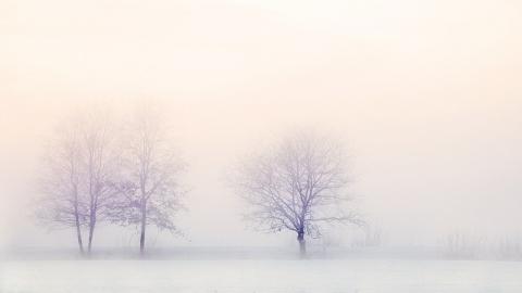 Первые в этом году дожди сегодня пройдут в Саратовской области